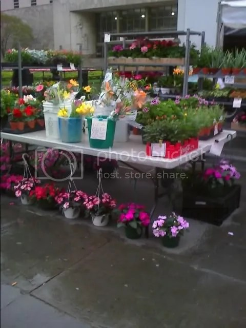 sample of Brooklyn Heights Farmers Market