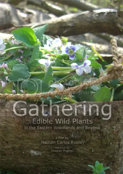Gather Pro photo GatheringPROcover.png