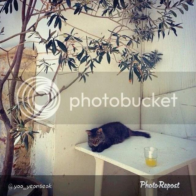 photo greece2.jpg