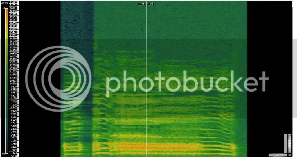 Rooster spectrogram