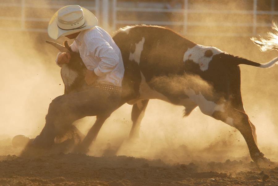 rodeo competitor