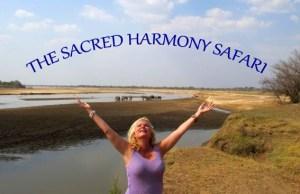 SacredHarmony-2.145224.jpg