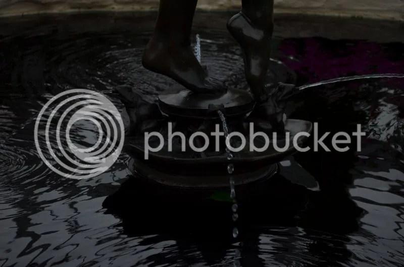 Barefoot Moonlight