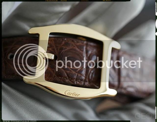 Tortue belt