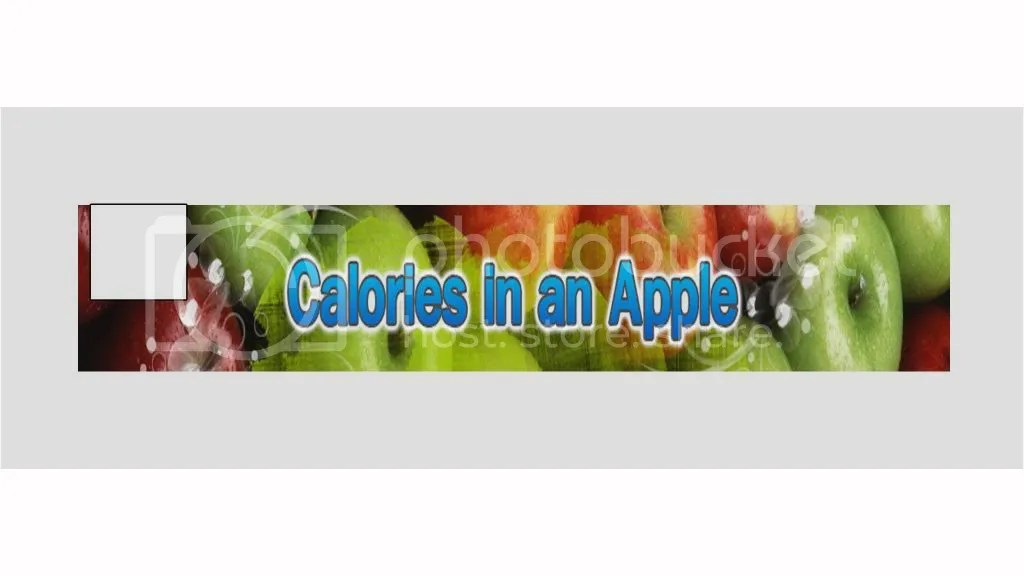 calories in fuji apple chicken salad paradise bakery
