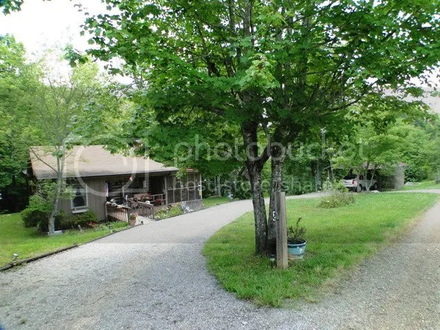 Beautiful setting creek pasture land private but not remote, Franklin NC Log Cabin, Franklin NC Cabins for Sale