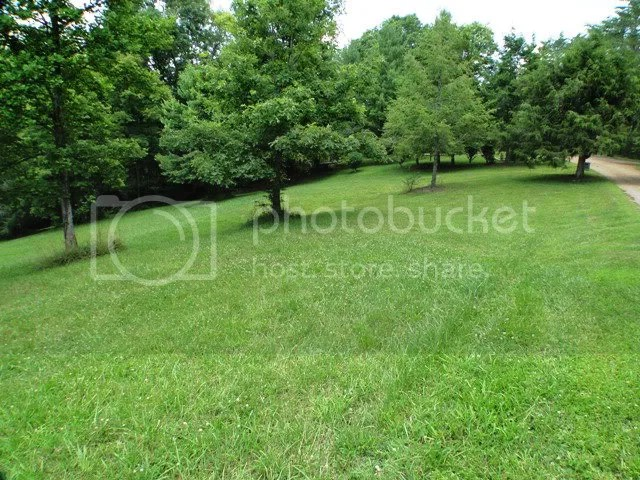 Over 4 acres including pasture land and a creek, Keller Williams Realty, Franklin NC Homes for Sale