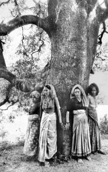 Chipko Movement in India