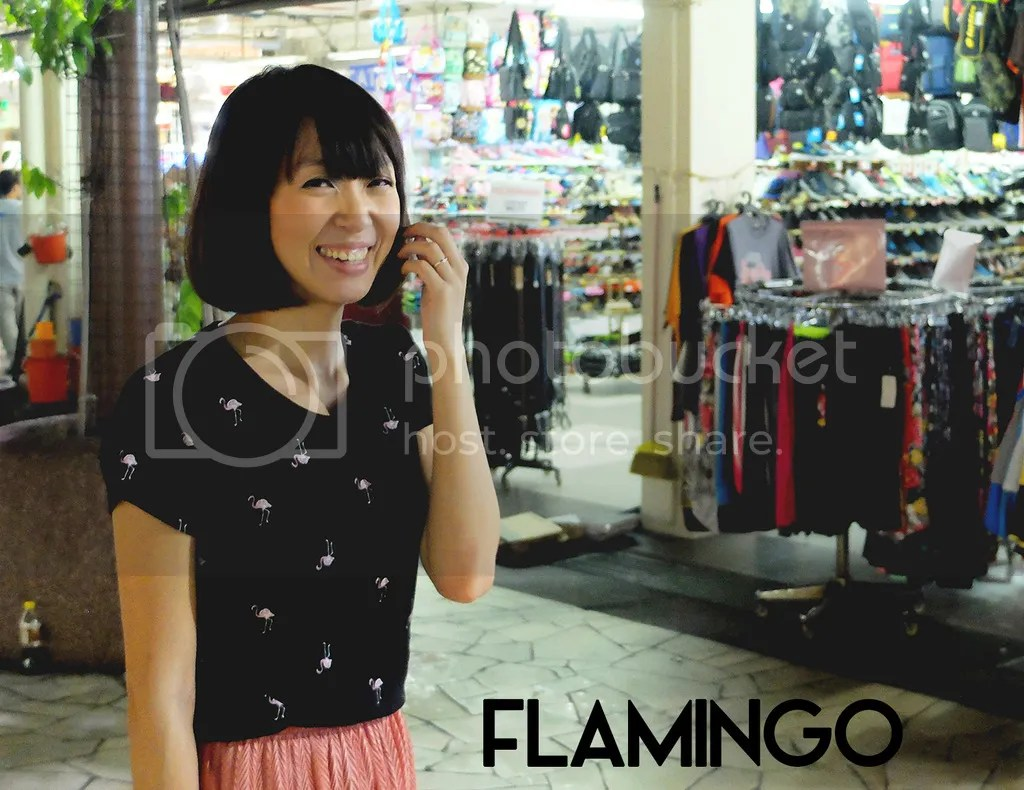 photo 1. flamingo.jpg