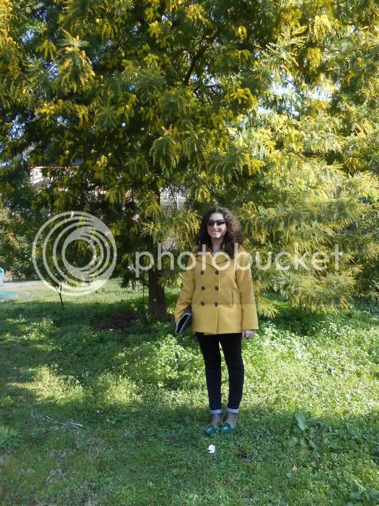 photo DSCN8004.jpg