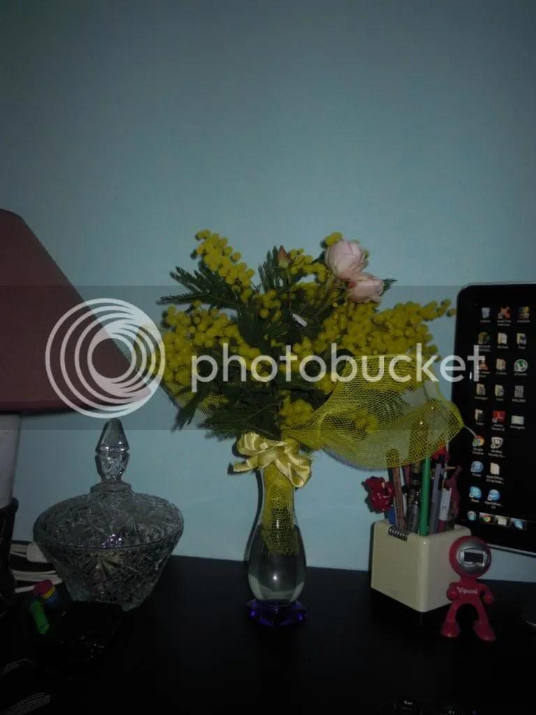 photo DSCN8645-1.jpg