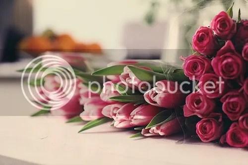 photo d56d8e5c8318407401f749becbad14c5.jpg