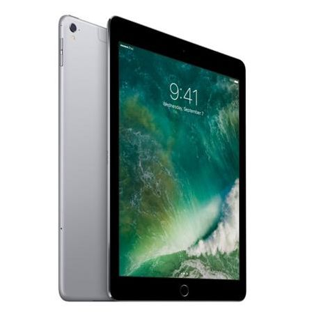 Apple iPad Pro 9.7 32Gb Cellular Space Gray MLPW2RU/A