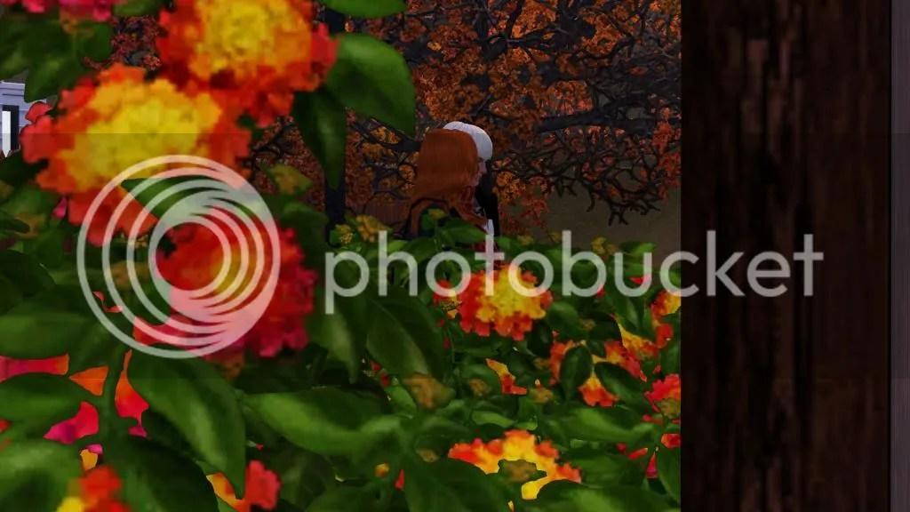 photo Screenshot-6_zps53187f19.jpg