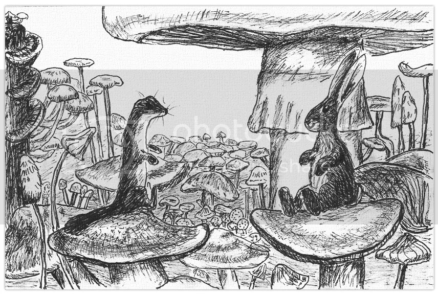 The Bunny and the Weasel between mushrooms. Drawing in ink on paper by Robby das Wiesel.
