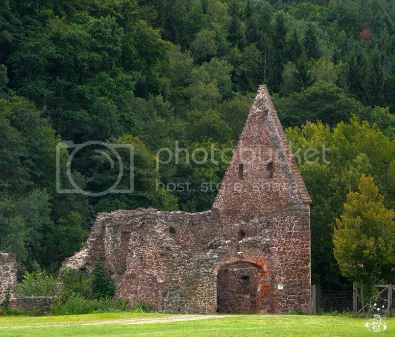 Ruins of the Buch Monastery in Saxony, Germany