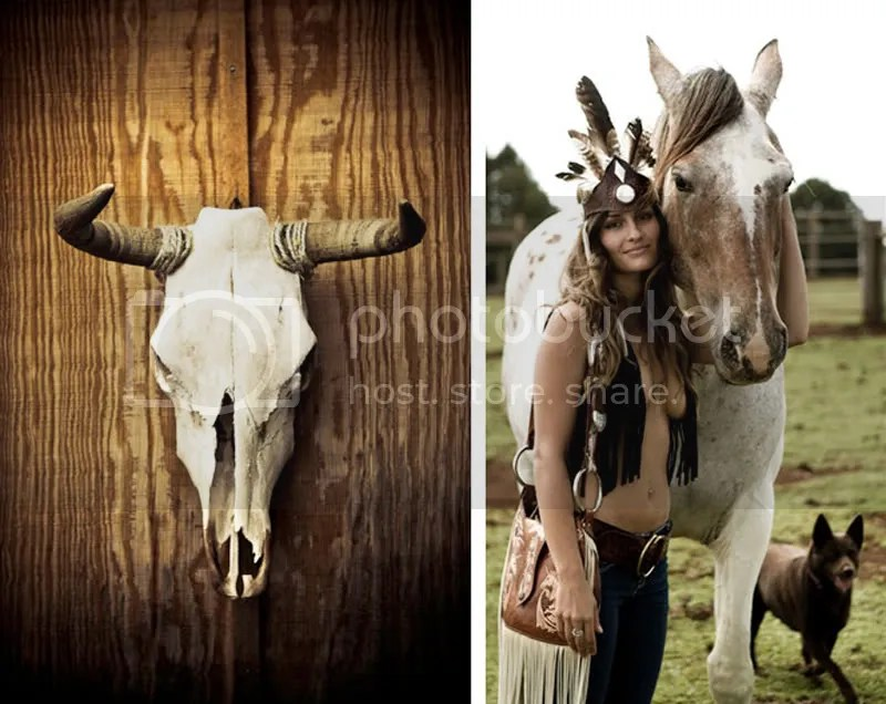 western,skull,horse,feathers
