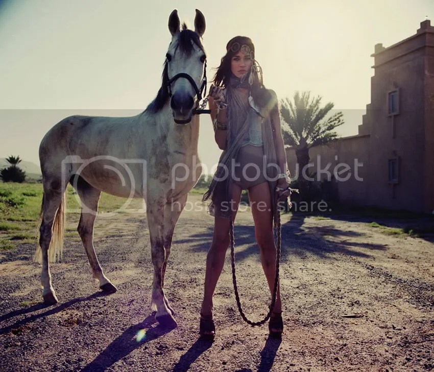 native america,horses,afteroon light