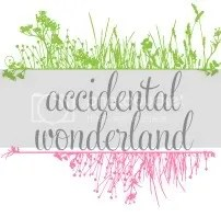 Accidental Wonderland