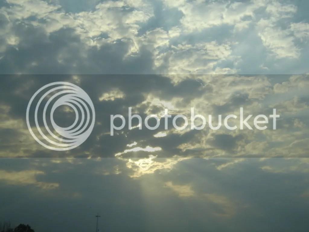 Original digital photography by Metro, copyright 2007