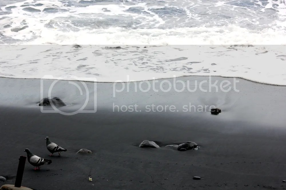 photo candelaria4.jpg