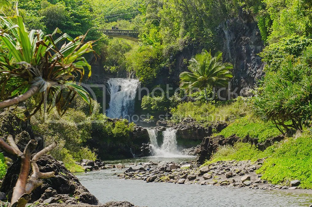 photo Hawaii2015KSimmons_43_zpsqnq9ha88.jpg