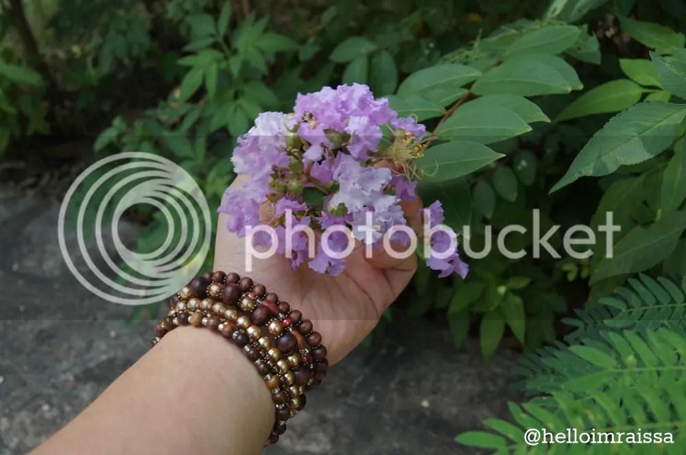 photo 7237a651-d784-433f-89ca-9fab6045f4ac_zpsa2cb8d56.jpg