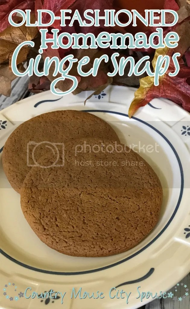 Old-Fashioned Homemade Gingersnaps- Country Mouse City Spouse