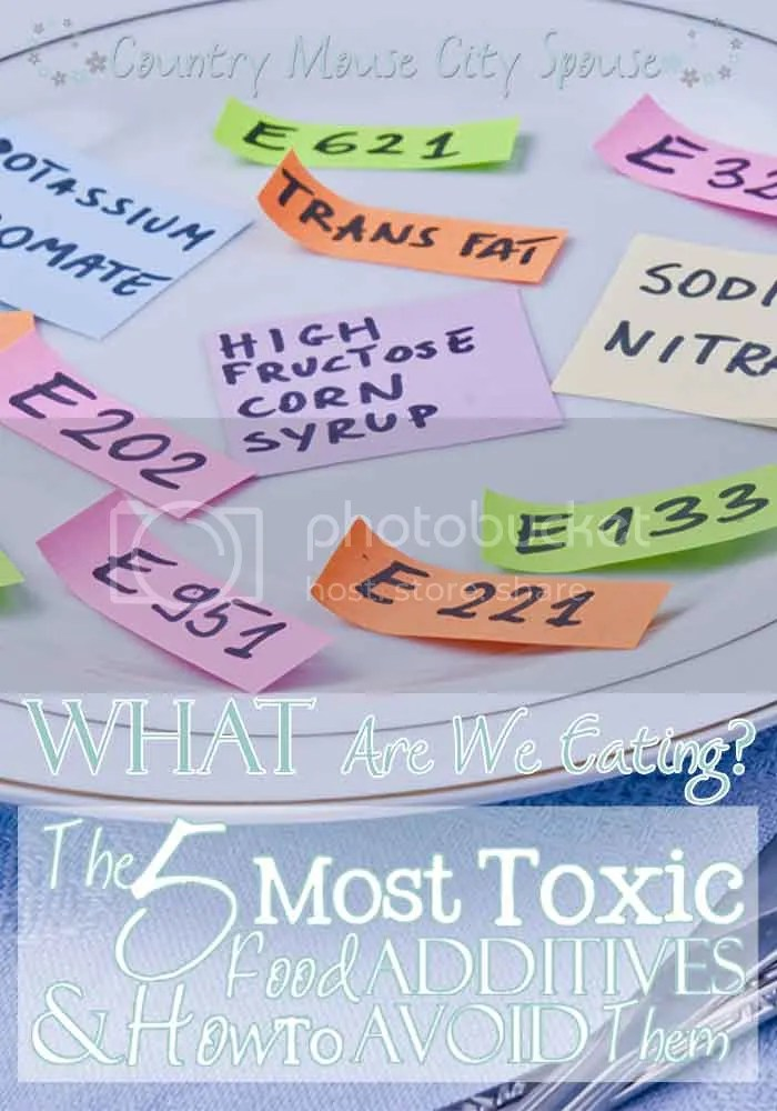 Country Mouse City Spouse: WHAT Are We Eating? The 5 Most Toxic Food Additives & How to Avoid Them