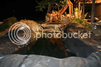 new koi fish pond