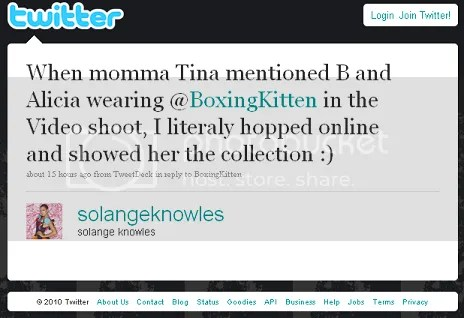 solange boxing kitten