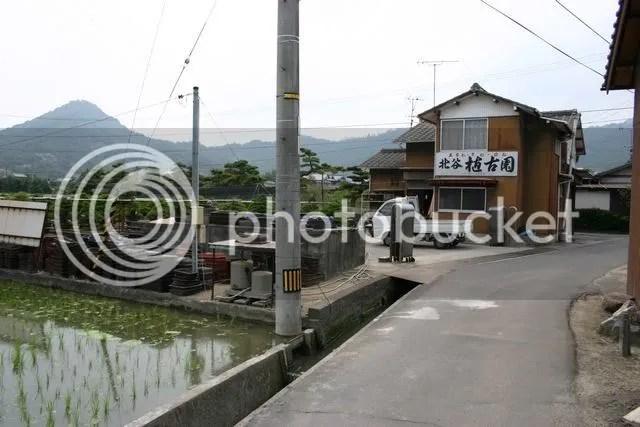 Kinashi 5