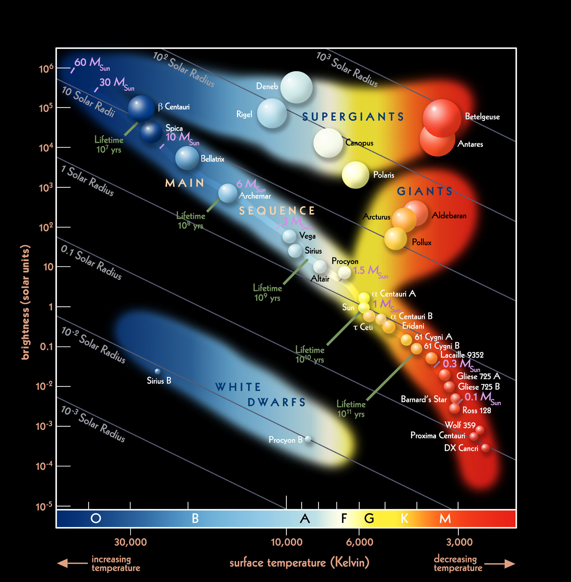 Putting Mass Luminosity Relation And Hertzsprung Russel