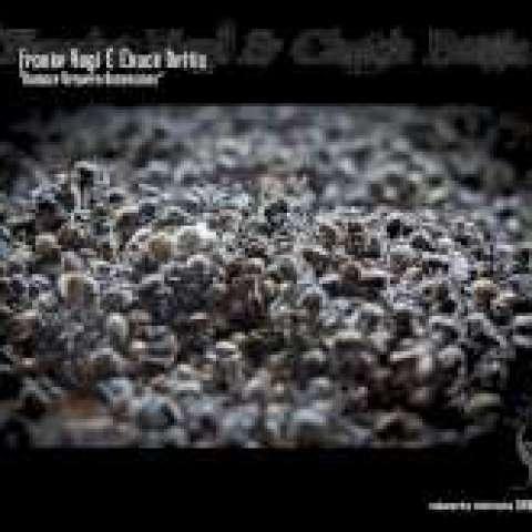Franke Vogl & Chuck Bettis – Balance Between Dimensions