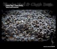 Franke Vogl & Chuck Bettis – Balance Between Dimensions