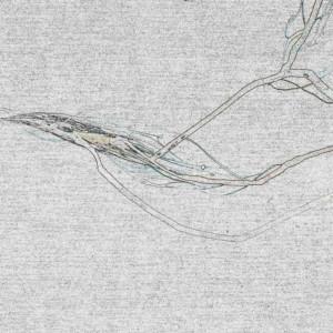 Knut – Nyctaphonia