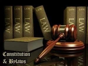 ConstitutionAndBylawsGraphic