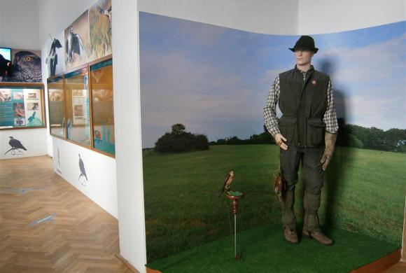 Ohrada Hunting Museum (Czech Republic)