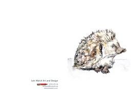 hedgehog-copy
