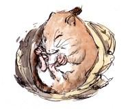 sleeping-mouse