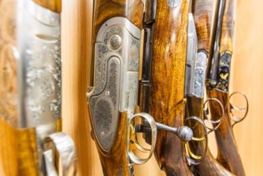 Minnesota Gun Trust
