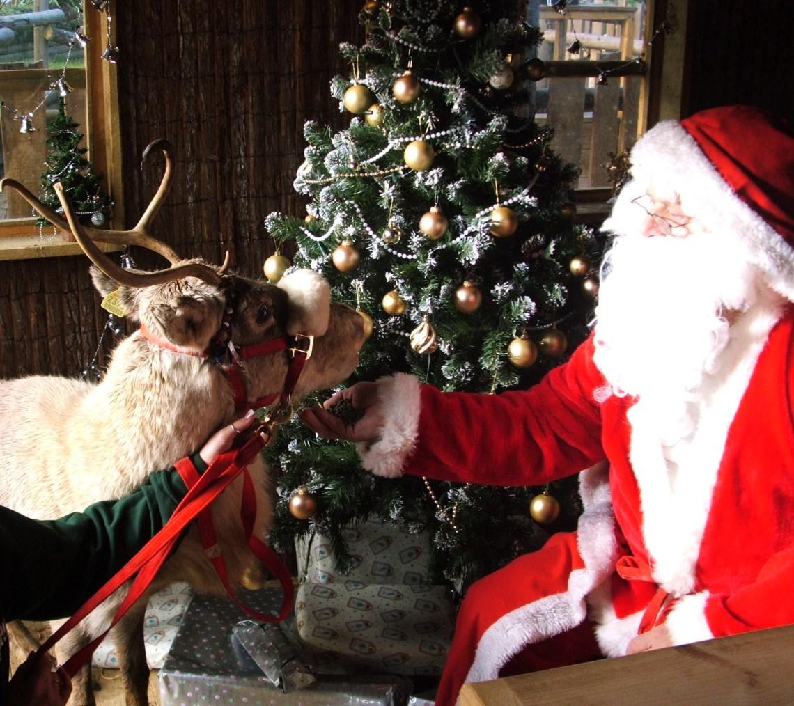 santa-with-reindeer