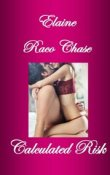 AudioBook Review: Calculated Risk by Elaine Raco Chase
