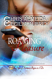 Roaming Pleasure: Bits of Life # 3 by Chris Almeida and Cecilia Aubrey