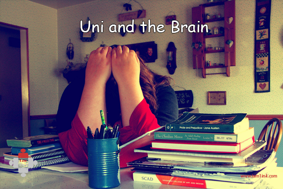 Uni and the Brain