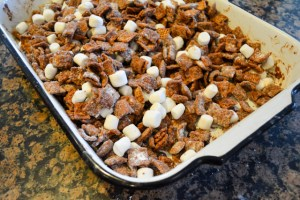 S'mores Chex Mix-10