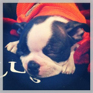 kemper sleeping in shirt