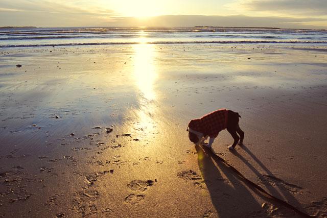Kemper at the Beach_05