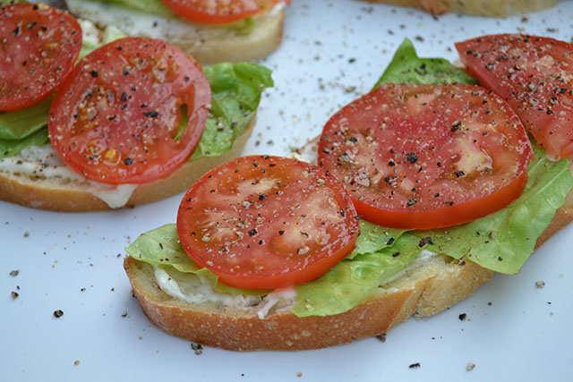 open faced tomato sandwich_B