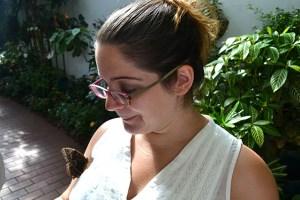 Key West Butterfly Conservatory_27